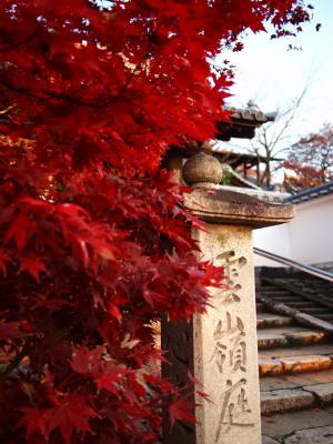 東福寺界隈(5)