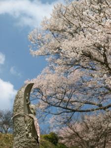 お地蔵さんと千年桜