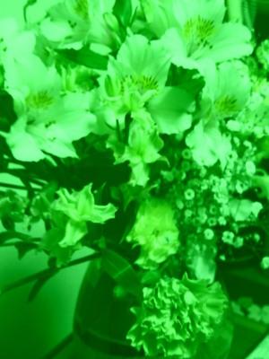 色効果(緑)