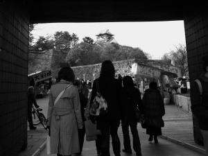 大阪城(0)