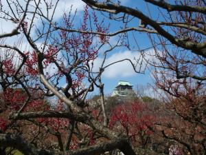 大阪城(5)