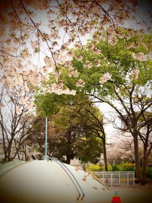 公園(トイフォト)
